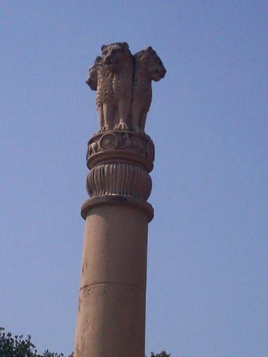 Year of the dragon: Ashoka I am | brilliantmoon