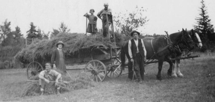 The Fletcher family's pork farm.