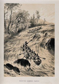 Lithograph of Livingstone and his party going down the Zambesi rapids Credit: Wellcome Library, London