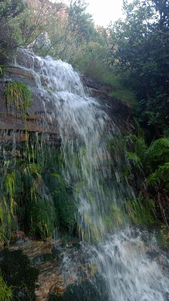 Waterfall that became the mountain stream that ran from Platteklip Gorge to the sea.  Now, into the Malteno Dam.