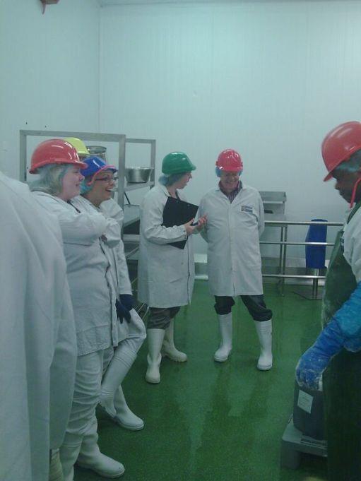 Factory Trials