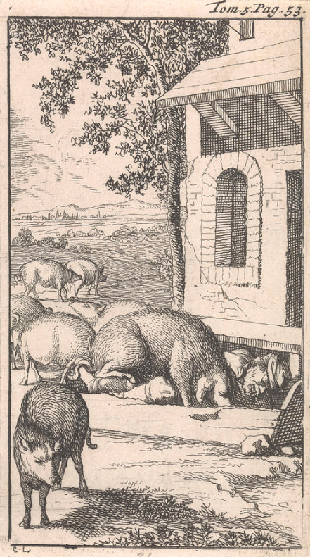 Sancho Sleeping In A Pig Trough Before A Farm is a drawing by Caspar Luyken And Pieter Mortier
