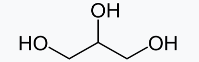 glyserol backbone