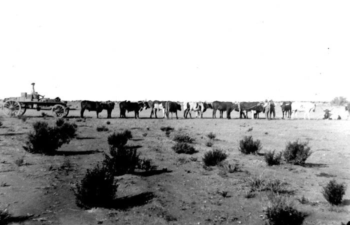 Boer war77